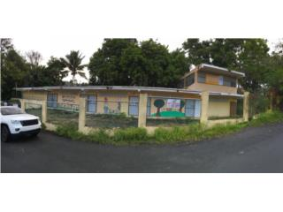 LOCAL COMERCIAL BARRIO CEIBA, CIDRA. 125k