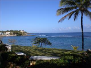 Tropical paradise in Dorado