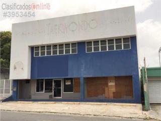EDIFICIO AVE NOGAL, LOMAS VERDES $290K