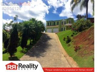 Camino Real, Caguas