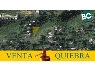 Tierras Nuevas Manatí, Venta por Quiebra!