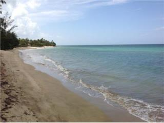 FINCA 4.5 CUERDAS CON PLAYA, $1.5MM