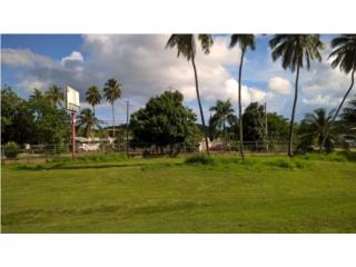 Mix use Commercial/Resident Property, Manati