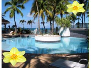 CANDINA REEF Resort Lifestyle AT CONDADO
