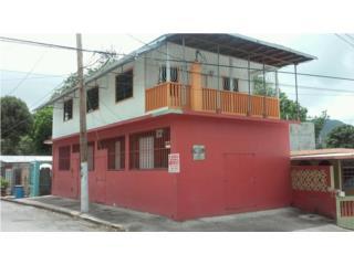 Buena inversion - casa y negocio en Coamo