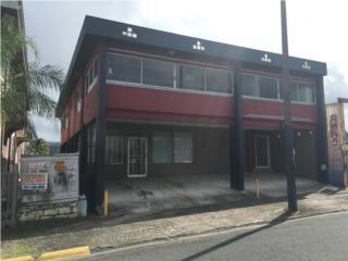 Local Comercial Avenida Degetau, Caguas