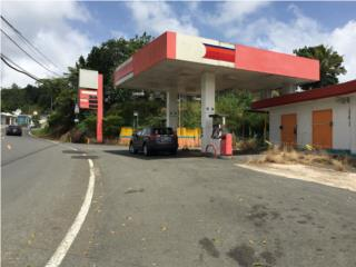 MAGNIFICA GAS STATION CIALES,125K, OMO