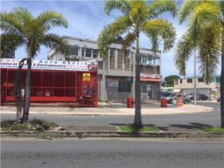 Ave Campo Rico  taller + local comercial