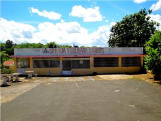 Local, Parking 25 autos, Cerca PR 199