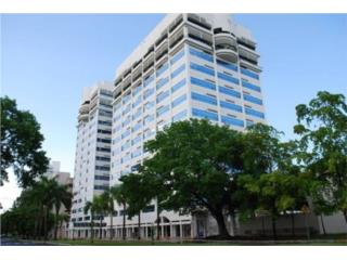 1003 Capital Center Condo San Juan
