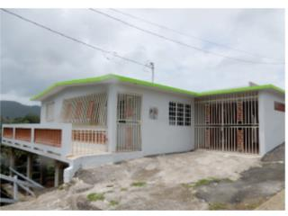 $52k Barrio Toita 3H1B Cayey