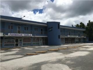Plaza Aibonito, Edificio Comercial