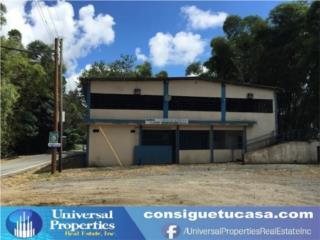 Bo San Patricio-Jayuya- Local Comercial
