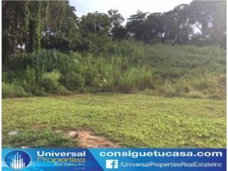 Hato Arriba - Arecibo - Gran Oportunidad