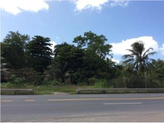 SECTOR LAS CUEVAS, CARR. 8860 - 9.4 CUERDAS