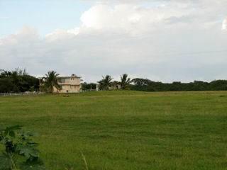 33 Acres next to Schacks Beach, Isabela