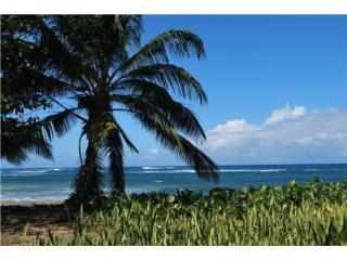 Chalets de la Playa,beach front condo,furnished