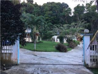 Gurabo, 2 casas y terreno, $180K
