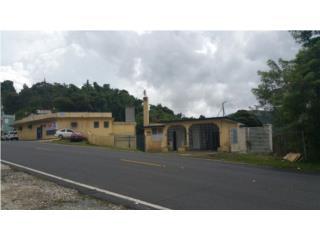 Bo. Beatriz - con 8,493.mc Prop Comercial, Cayey