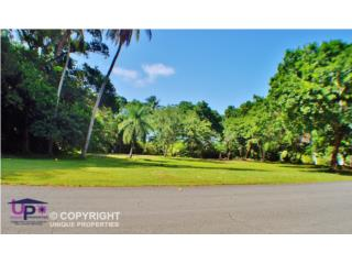 Dorado Beach Estates, Dorado, PR. CORNER LOT!