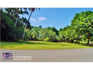 Dorado Beach Estates, Dorado, PR. CORNER LOT!