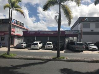 LOCAL COMERCIAL AVE. CAMPO RICO