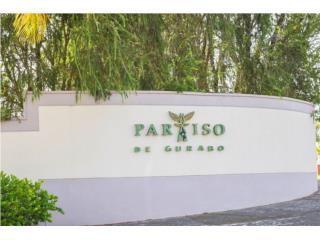 URB. PARAÍSO DE GURABO (1)