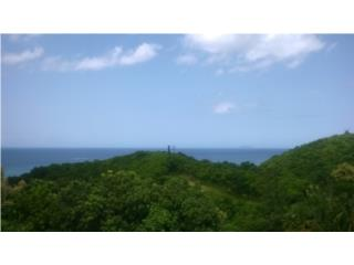 HILL TOP OCEAN VIEW