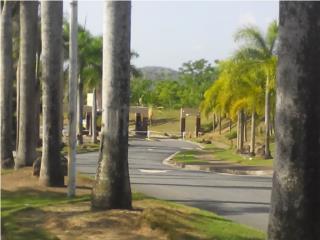 Urb. Los Caminos en San Lorenzo