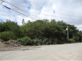 Parque Industrial Vayas Torres-12.58 Cuerdas