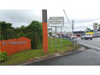 BO. CANABONCITO(LA SIERRA) - CAGUAS