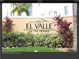 C Urb. El Valle, Los Prados en Caguas (varias)