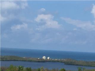 Tremenda vista  al mar &Laguna Natural Joyuda