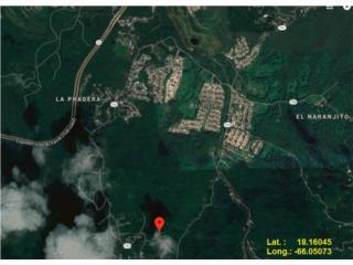 Bo. Borinquen, Solar #2, Caguas