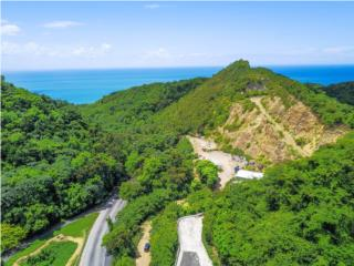 18 Acres with Ocean View