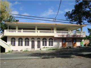 Bo. Laguna, Pronto en Inventario