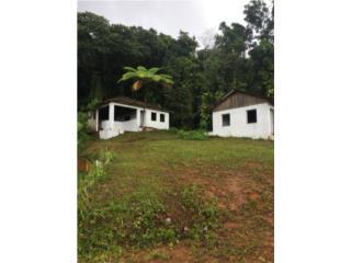 NAGUABO,FALDA DEL YUNQUE,7CDS APROX/ $150K