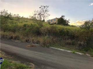 Solar Barrio Santa Catalina-Calle Dixon Matos