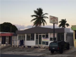 Comercial, Ave. Magnolia en Bayamon