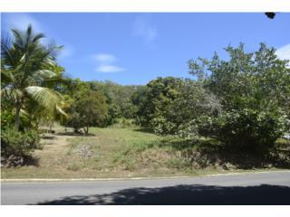 For Sale: Residential Lot, Palmas del Mar, Hu