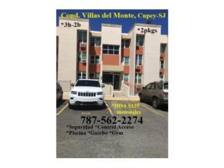 Villas del Monte *Aproveche FHA con $100 Pron