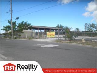 Propiedad Industrial, Mayaguez