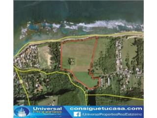 SHACKS BEACH - Isabela - 35 ACRES