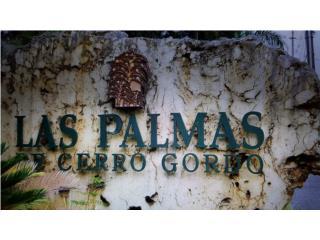 Las Palmas de Cerro Gordo 4h. 2.5b