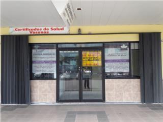 Local, Paseo del Sur, Avenida Los Caobos