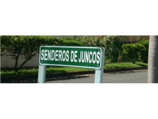 URB SENDEROS DE  JUNCOS  JS