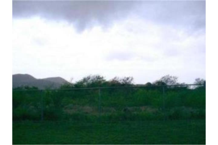 Susua Puerto Rico