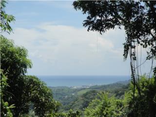 Finca con vistas al mar y montañas Mayaguez