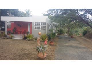 Carr.704 KM 1.5-Palmarejo-Cuyon-Casa y 1Cda