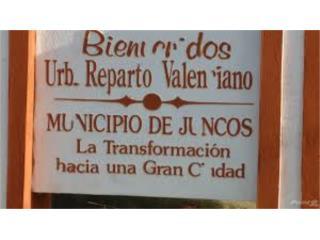 Reparto Valenciano